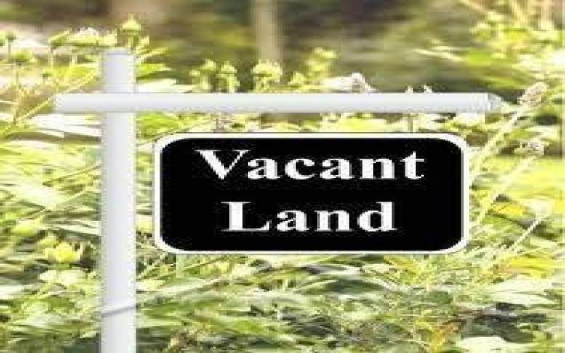 72 BUNNY TRAIL, SAGINAW TWP, Michigan 48638, ,Vacant Land,For Sale,BUNNY TRAIL,61031342804